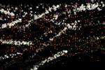 Pixels Particle Curve